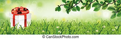 Gift Box Spring Grass Beech Twigs Header