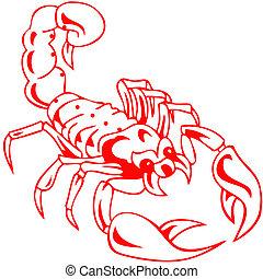 giftig, skorpion, rotes