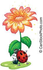 gigante, flor, bicho, debajo