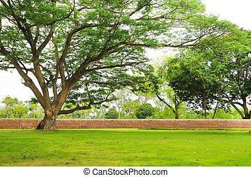 gigante, giardino, parete, albero, verde, mattone, erba