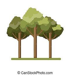 gigante, tre, albero