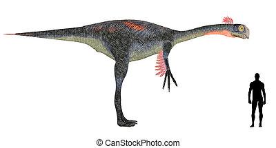 Gigantoraptor Size Comparison