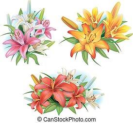 gigli, fiori, disposizione
