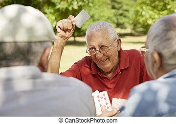 giltiga seniors, grupp, av, gammala vänner, spelande kort, hos, parkera