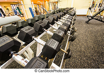 gimnasio, y, condición física, room.