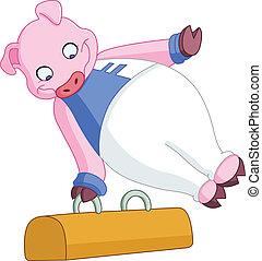 gimnasta, macho, cerdo