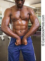 ginásio, músculos, flexionar, muscular, homem
