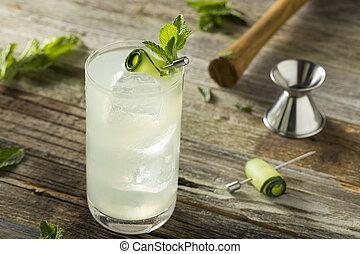 gin, spritz, concombre, rafraîchissant, cocktail
