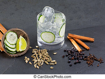 Gin tonic cocktail with lima cucumber vanilla cloves cardamom cinnamon and juniper berries