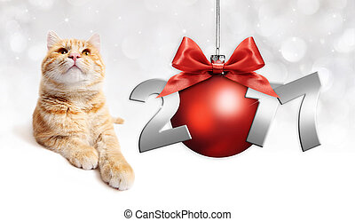 ginger cat and red christmas ball with red satin ribbon bow and 2017 text