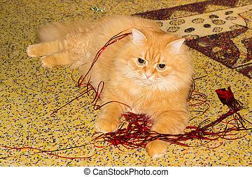 Ginger cat lying among the Christmas tinsel