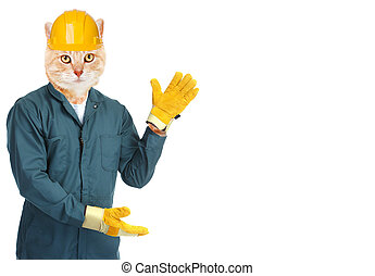 Ginger cat worker. - Ginger cat worker isolated on white ...