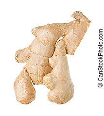 ginger isolated on white background