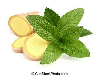 Ginger root with mint leaves