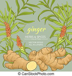 ginger plant vector frame on color background