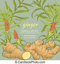 ginger vector frame - ginger plant vector frame on color ...