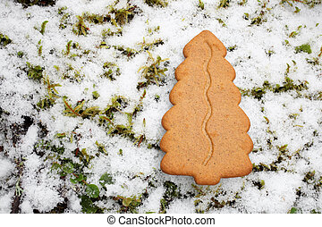 Gingerbread cookie on winter background