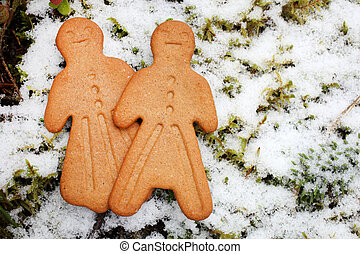 Gingerbread cookies on winter background