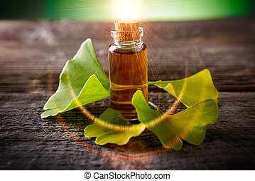 Gingko biloba essential oil and fresh leaves on wooden board