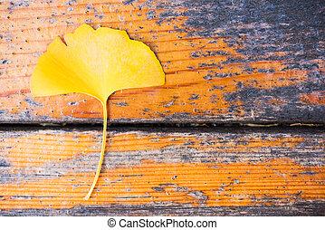 Gingko yellow leaf on wood