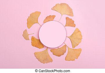 Ginkgo Biloba leaves herbarium on pink background