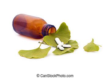 ginkgo biloba, strom, list, a, pharmaceuticals.
