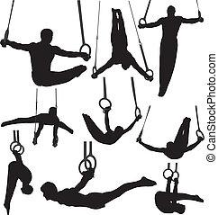 ginnastica, silhouette, vettore, anelli