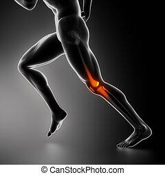 ginocchio, lesione, concetto, raggi x, sport