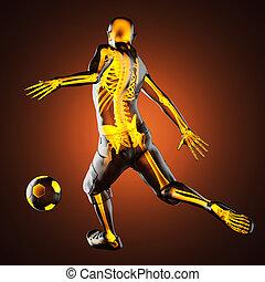 giocatore, gioco, calcio