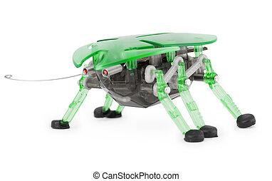 giocattolo, -, robot, cyber, fondo, scarabeo, bianco