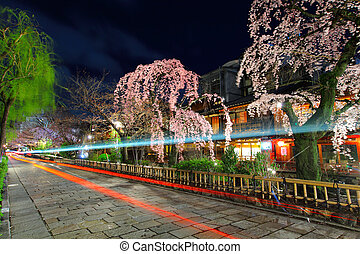 Gion in Kyoto with traffic trail and sakura tree