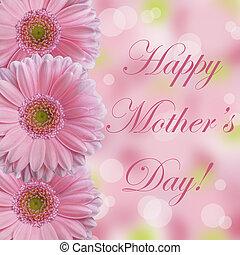 giorno, margherita, abstarct, madre, rosa
