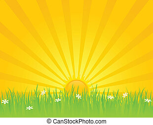 giorno pieno sole, estate