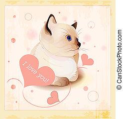 giorno valentines, cartolina auguri, con, poco, siamese, gattino, e, cuori