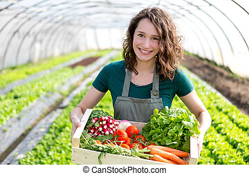 giovane, attraente, donna, raccolta, verdura, in, uno, serra