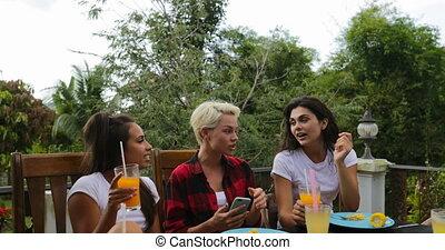 giovani ragazze, sedendo tavola, presa, selfie, foto, mentre, uomini, gruppo, cottura, barbecue, amici, assemblea, su, estate, terrazzo, parlare, persone, comunicazione