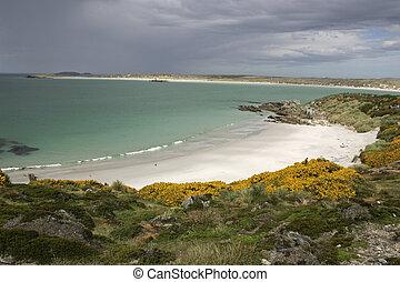 Gipsey Cove, beach, Falklands, near Stanley