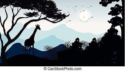girafa, silueta, floresta, cena