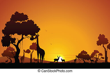 girafe, cerf, jungle