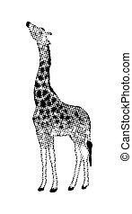 girafe, dessin animé, animal, halftone