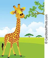 girafe, feuille, manger