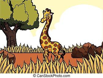 girafe savanah safari