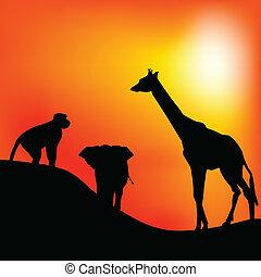 giraffe and monkey and elephant vector illustration