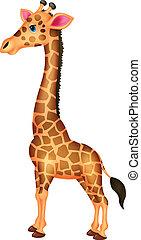 Giraffe cartoon  - Vector illustration of Giraffe cartoon