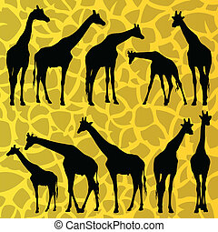 Giraffe detailed silhouettes illustration collection