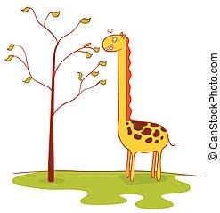 giraffe eats leaves