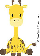 Giraffe - Baby giraffe seated