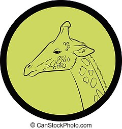 Giraffe Face Closeup Vector