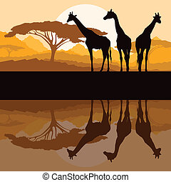 Giraffe family silhouettes in Africa wild nature mountain landscape background illustration vector