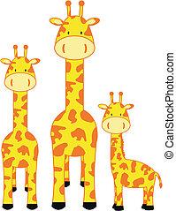 giraffe, gezin